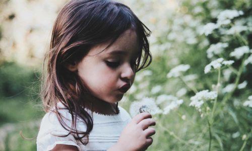 Kleines Mädchen pustet eine Pusteblume