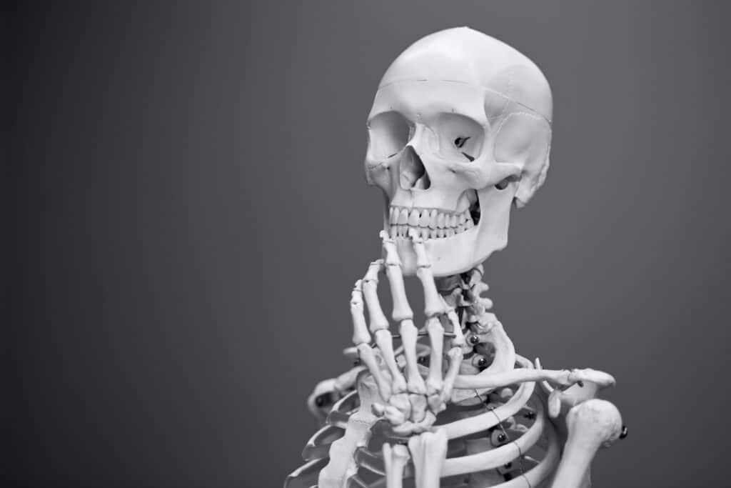 Skelett überlegt